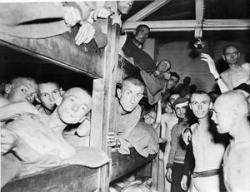 THE LIBERATION OF MAUTHAUSEN CONCENTRATION CAMP, GERMANY, MAY 1945 (EA 65915) Emaciated, inmates at Mauthausen concentration camp after liberation. Copyright: © IWM. Original Source: http://www.iwm.org.uk/collections/item/object/205125295
